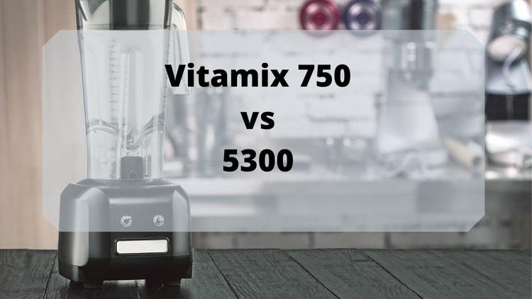 vitamix 5300 vs vitamix 750