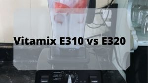vitamix e310 vs e320