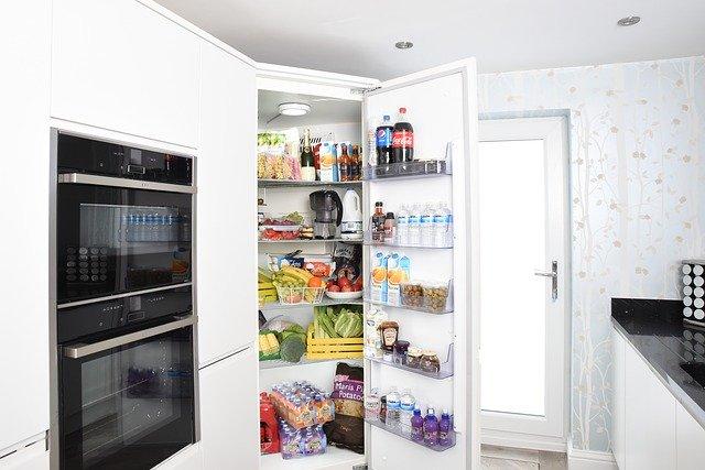 comparison between fridge and refrigerator