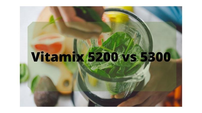 comparing vitamix 5200 and 5300
